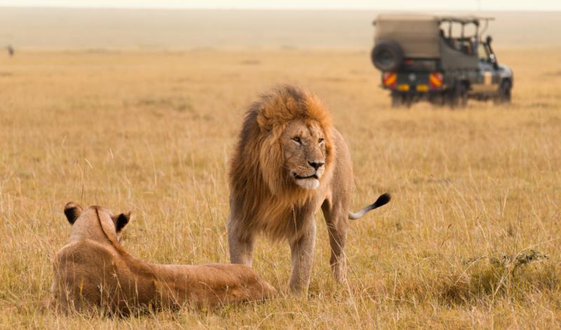 Kitesurfing-diani-safari-kenya-africa